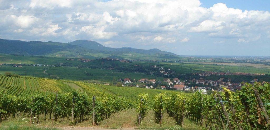 Balade dans les Vosges - Association les Sentiers de Soie